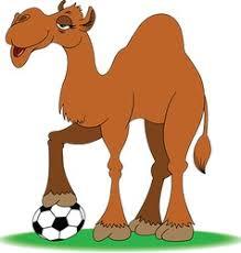camelsoccer.jpg.ea3dd155de003dcd542a039a25daf116.jpg